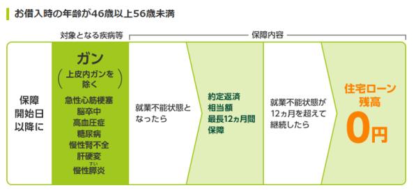借入時の年齢が46歳以上56歳未満