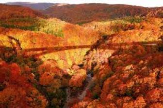京都嵐山観光名所散策