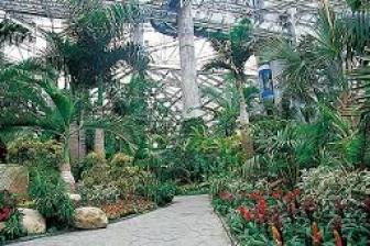 上海植物園上海観光】穴場