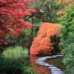 浜松市にある龍潭寺の歴史とは?井伊家の菩提寺・庭園の解説!