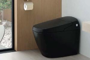 黒いトイレ「サティス」