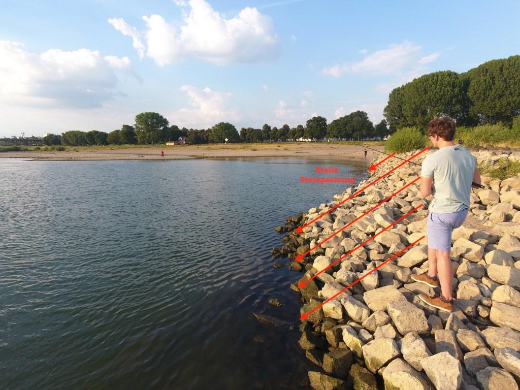 Zanderangeln im Fluss