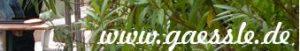 gaessle-banner