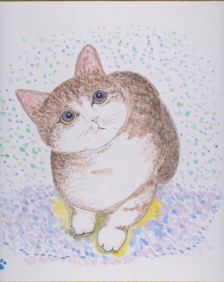 色紙の絵ー見上げる猫