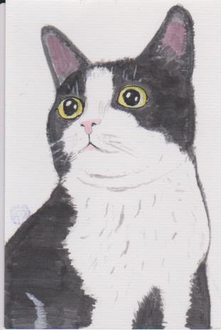 猫の絵ー93