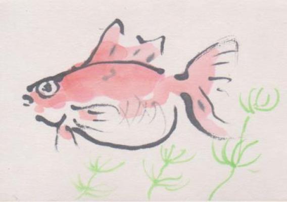 金魚の絵8