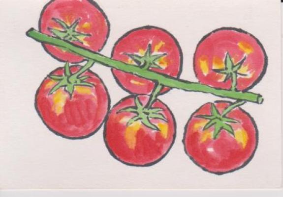 ミニトマトの絵ー8