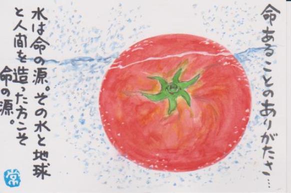 トマトの絵ー19