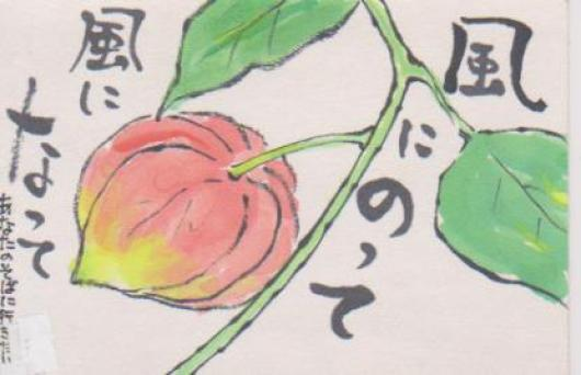 ほおずきー7
