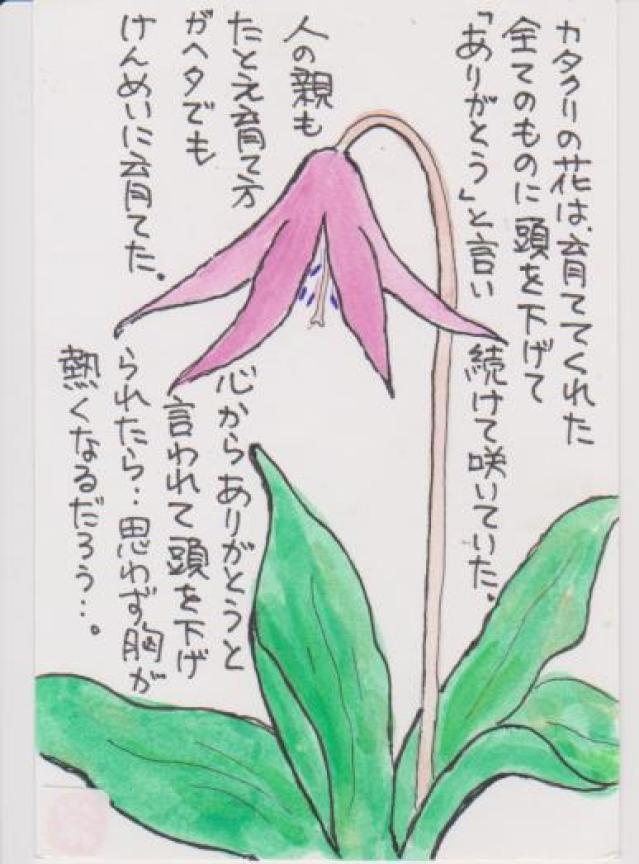 カタクリの花の絵ー8