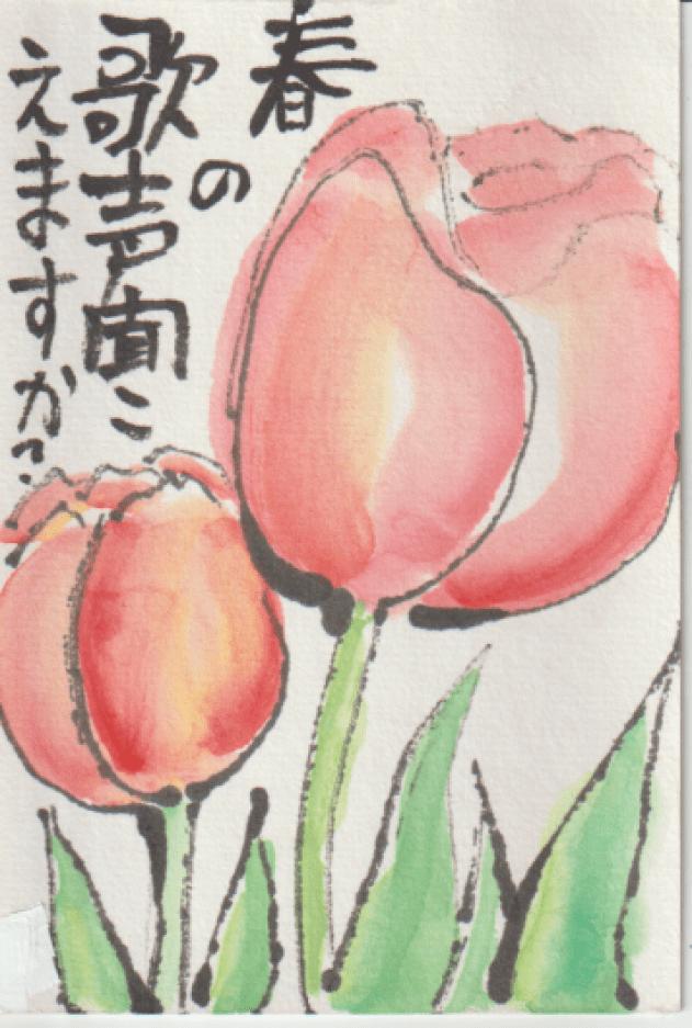 チューリップのハガキ絵-15
