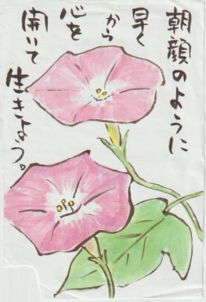 朝顔の絵手紙-4