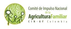 logo CIN-AF fondo blanco