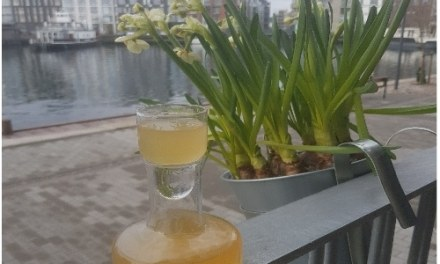 Citronmelisse snaps