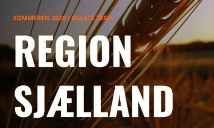 Sommerens øloplevelser i Region Sjælland