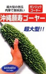 okinawaganjyugoya
