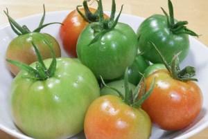 tomato-Pickles005