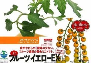 tomatoFYEX