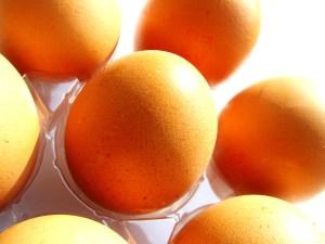 eggs-1561796