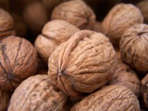 nuts-1322403