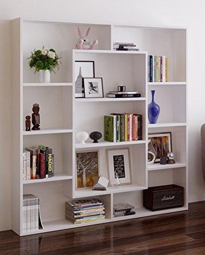Homidea VENUS Bücherregal - Standregal - Büroregal - Raumtieler für Wohnzimmer/Büro in modernem Design