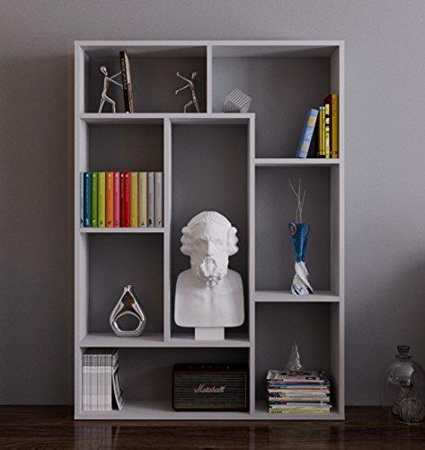 Homidea SPRING Bücherregal - Standregal - Büroregal - Raumtieler für Wohnzimmer/Büro in modernem Design