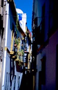 Sevilla Judenviertel Santa Cruz 2016-07-05 Foto Elke Backert