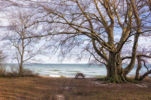 Langeland 2015 Vinter (28 of 30)