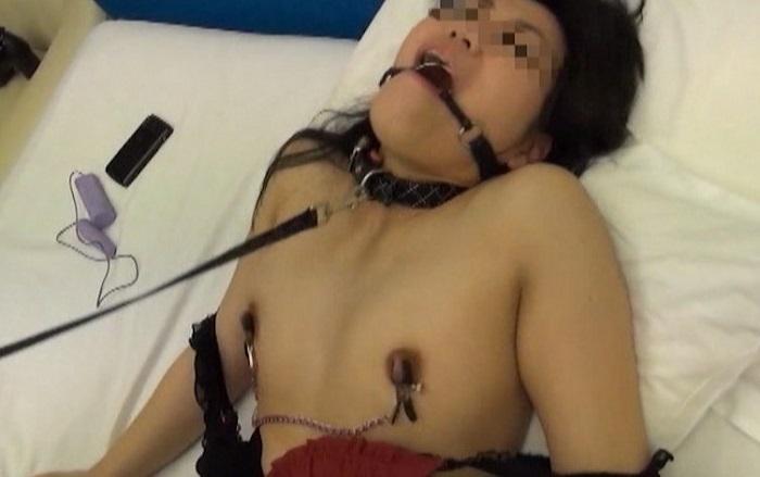 アップル写真館投稿ビデオ vol.17 【投稿者ナックルGと性ペットたち編】