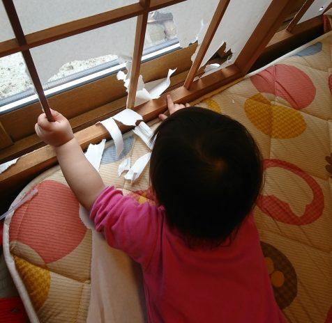 新築の障子は子ともに破かれる