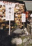 野宮神社スポット