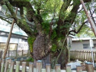 富知六所浅間神社スポット