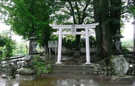 上野国総社神社(こうずけのくにそうじゃ神社)