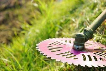 太宰府市 一軒家 庭の除草|えびす造園