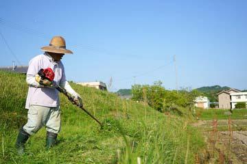 宗像市 一軒家 庭の草刈り|えびす造園