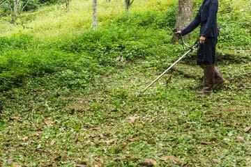 福岡市西区 一軒家 庭の草刈り|えびす造園