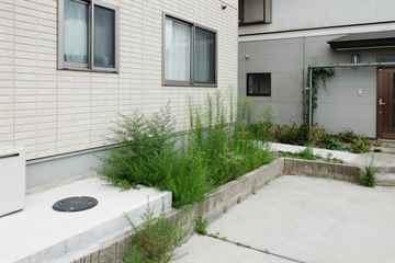 古賀市 一軒家 庭の草引き|えびす造園