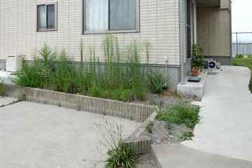福岡市西区 一軒家 庭の草引き|えびす造園