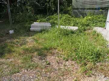 篠栗町 一軒家 庭の草引き|えびす造園