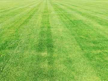 福岡市東区 一軒家 庭の芝刈り|えびす造園
