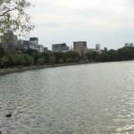 福岡市バスフィールドレポート|中央区編(大濠公園part14)