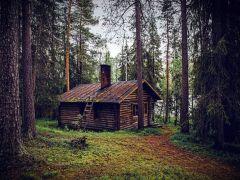 Die Hütte der Jägerin