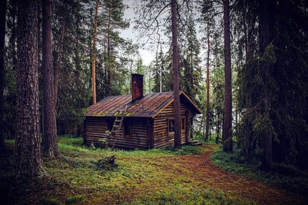Die Hütte der Jägerin im Wald