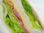 【検証】コンビニのサンドイッチやおにぎりは本当に危険なのか?