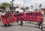【世界が反対!】40か国以上で反モンサント・デモ、遺伝子組み換え食品などに抗議。
