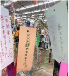 【ねがい】日本各地の短冊「安倍政権が一日も早く終わりますように」