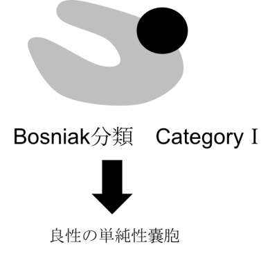 bosniak classification category1