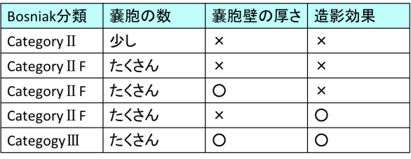 bosniak classification