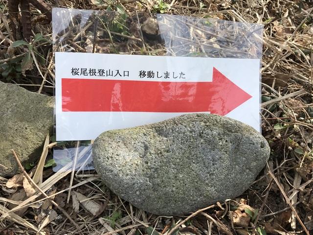 角田山 桜尾根