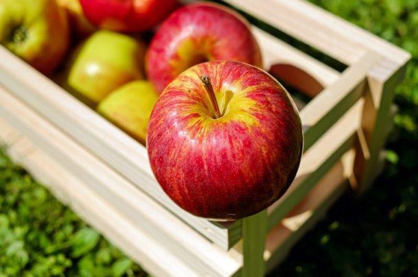 Jabłko w skrzynce do wyrobu octu jabłkowego